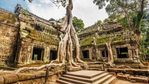 Inside of Ta Prohm, Angkor Temple, Siem Reap, Cambodia, offered in a tour with Asia Vacation Group